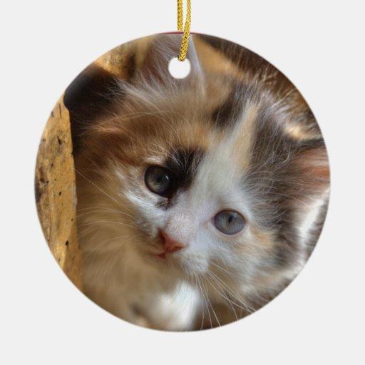Heterochromia Calico Kitten Double-Sided Ceramic Round Christmas Ornament