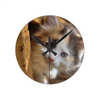Heterochromia Calico Kitten Round Clock