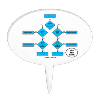 Heterotroph Flow Chart You Are Here Biology Humor Cake Pick