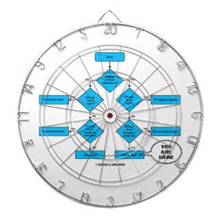Heterotroph Flow Chart You Are Here Biology Humor Dart Boards