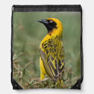 Heuglin's Masked Weaver, Ngorongoro Conservation Cinch Bags