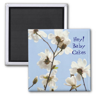 Hey Baby Cakes! magnet Love Sweetheart Magnolias
