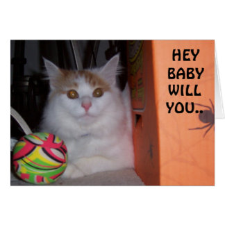 HEY BABY, WILL YOU BE MY VALENTINE SAYS KITTEN CARD