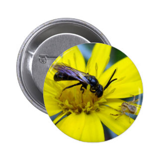 Hey Bee and Crabby Pinback Buttons