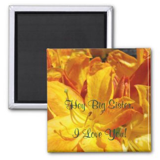 Hey Big Sister I Love You! magnet gifts Rhodies