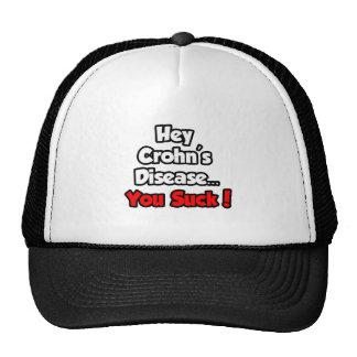 Hey Crohn's Disease...You Suck! Mesh Hats