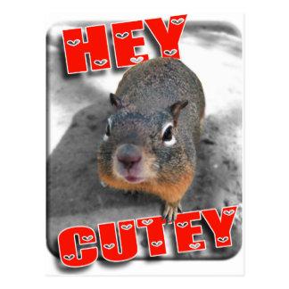Hey cutey funny squirrel postcard
