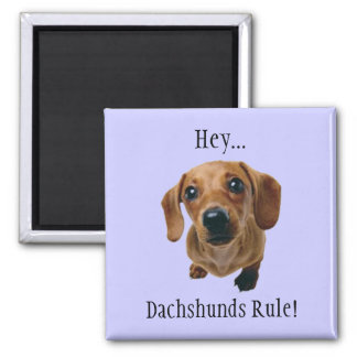 """""""Hey... Dachshunds Rule!"""" 2 Inch Square Magnet"""