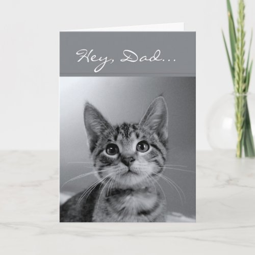 Hey, Dad, Have a Meow-velous Birthday! Card