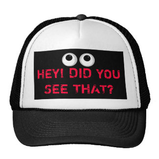 HEY! DID YOU SEE THAT?  - HAT