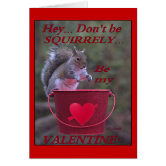 """Hey... Don't be Squirrely... Be My Valentine!"" Greeting Cards"