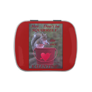 """""""Hey... Don't be Squirrely... Be My Valentine!"""" Jelly Belly Tin"""