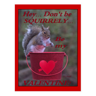 """""""Hey... Don't be Squirrely... Be My Valentine!"""" Postcard"""