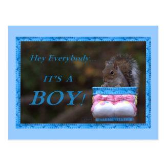 Hey Everybody … It's A Boy! Postcard