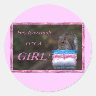 Hey Everybody … It's A Girl! Classic Round Sticker