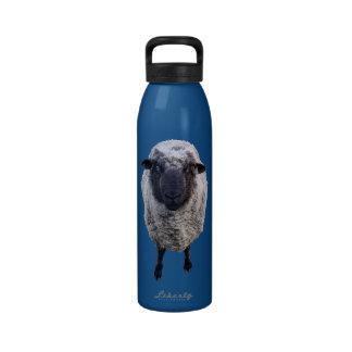 Hey Ewe Reusable Water Bottle