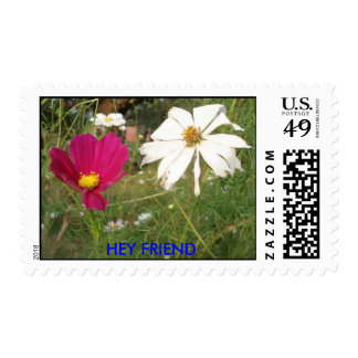 HEY FRIEND POSTAGE STAMPS