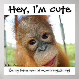 Hey I m Cute Baby Orangutan Posters