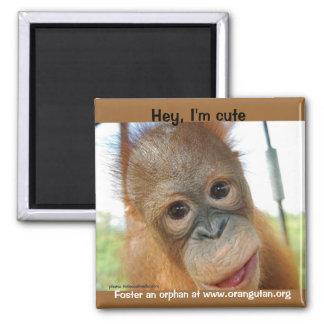 Hey, I'm a Cute Primate 2 Inch Square Magnet