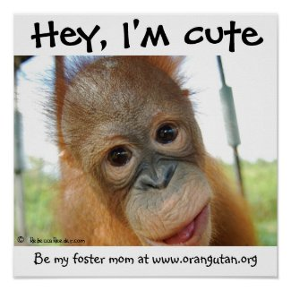 Hey, I'm Cute Orangutan print