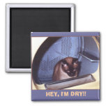 HEY, I'M DRY!! 2 INCH SQUARE MAGNET