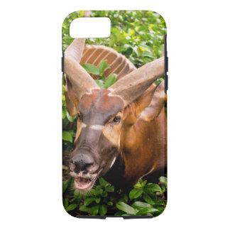 Hey Im grazing here! iPhone 8/7 Case
