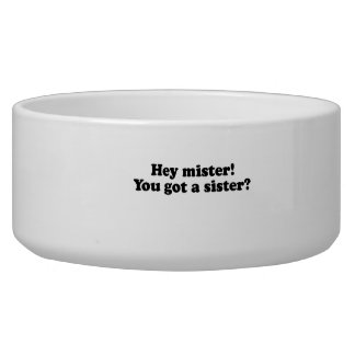Hey mister you got a sister png dog bowl