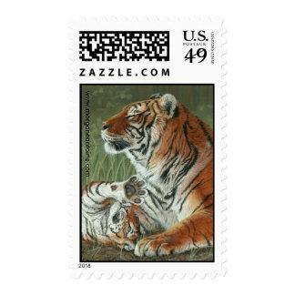 Hey Mom Wake Up Tiger cub medium postage stamp