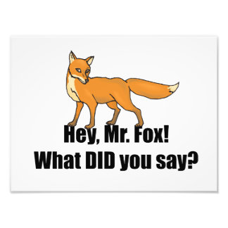 Hey Mr Fox What DID You Say Funny Photo Art