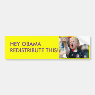 HEY OBAMA REDISTRIBUTE THIS!!!!! BUMPER STICKERS