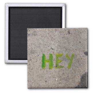 hey on the sidewalk magnets