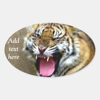 Hey_ Oval Sticker