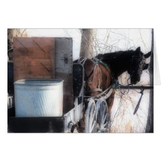 Hey There, Orton Effect, Amish Horse Card