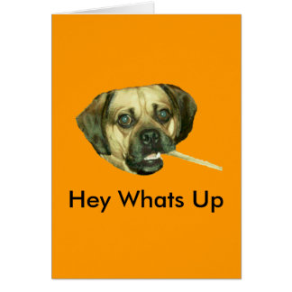 Hey Whats Up Greeting Card
