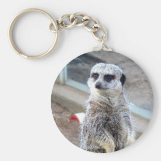 Hey Who Do You Think You'r Looking At? Keychain
