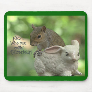 """Hey ... Who you callin' Thumper""? Mouse Pad"