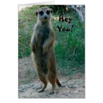 Hey You Meerkat Birthday Card