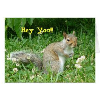 Hey You Squirel Card