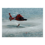 HH-65 Dolphin Posters