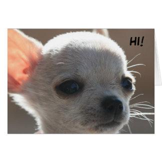 HI! CARD