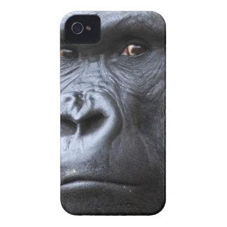 Hi. iPhone 4 Case-Mate Cases