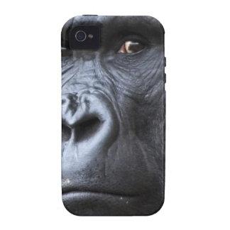Hi. iPhone 4 Cases