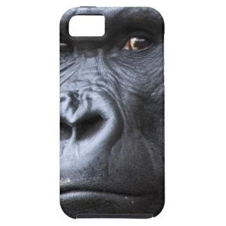 Hi. iPhone 5 Covers
