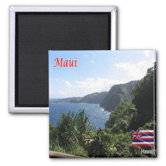 HI - Hawaii - Maui Magnet