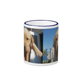 Hi, Hello - Popping Up to Say Hi! - Labrador Puppy Ringer Mug