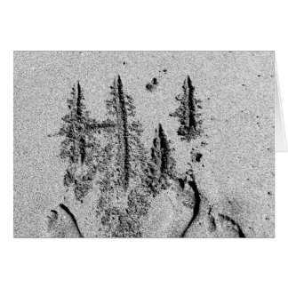 Hi in sand black and white feet hand stationery note card