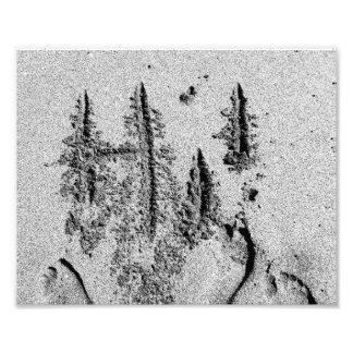 Hi in sand black and white feet hand photo art