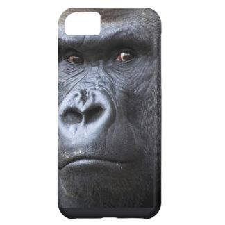 Hi. iPhone 5C Cover