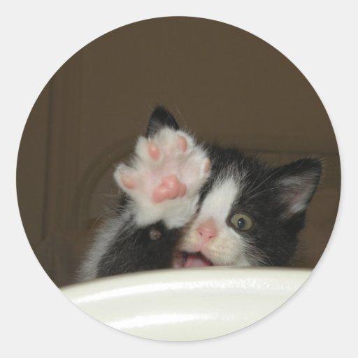 """Hi"" Kitten stickers"