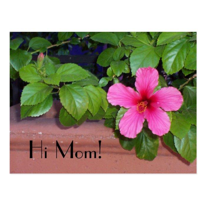 Hi Mom! Flower Postcard